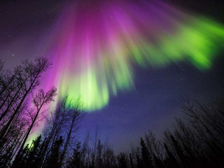 Citizen science for the aurora